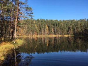 Nuuksio october 9 lake