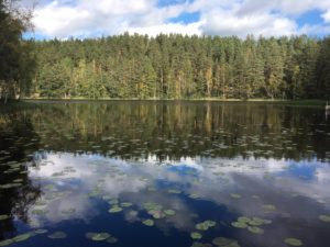 Nuuksio september 4 lake