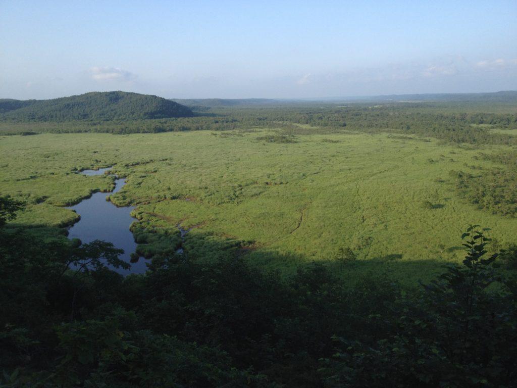 釧路湿原 コッタロ展望台