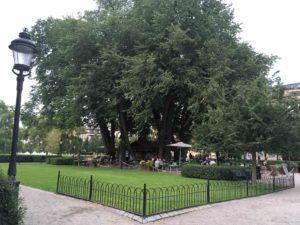 ストックホルム王立公園のカフェ
