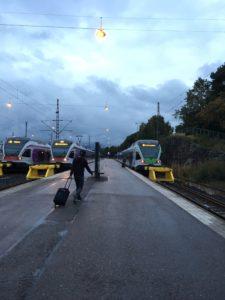 ヘルシンキ中央駅の電車