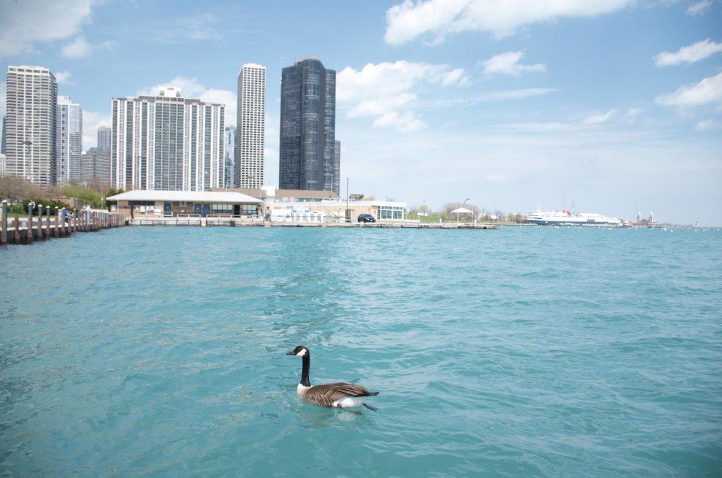 シカゴのミシガン湖