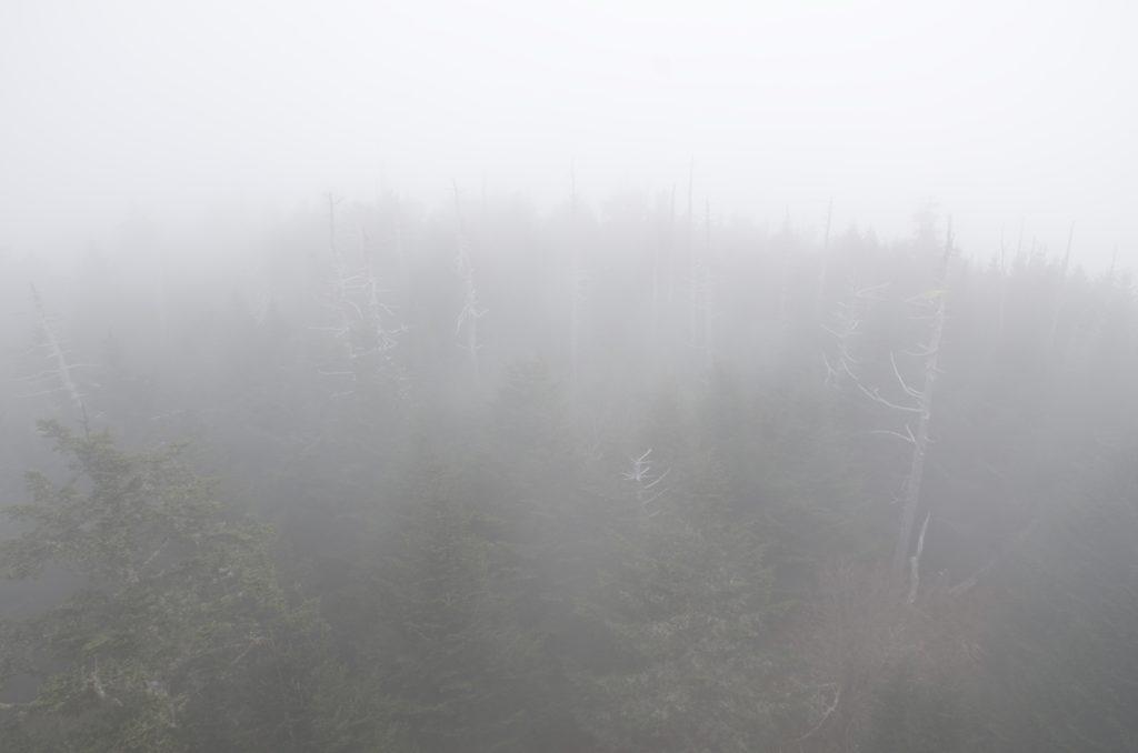 霧のクリングマンズドーム