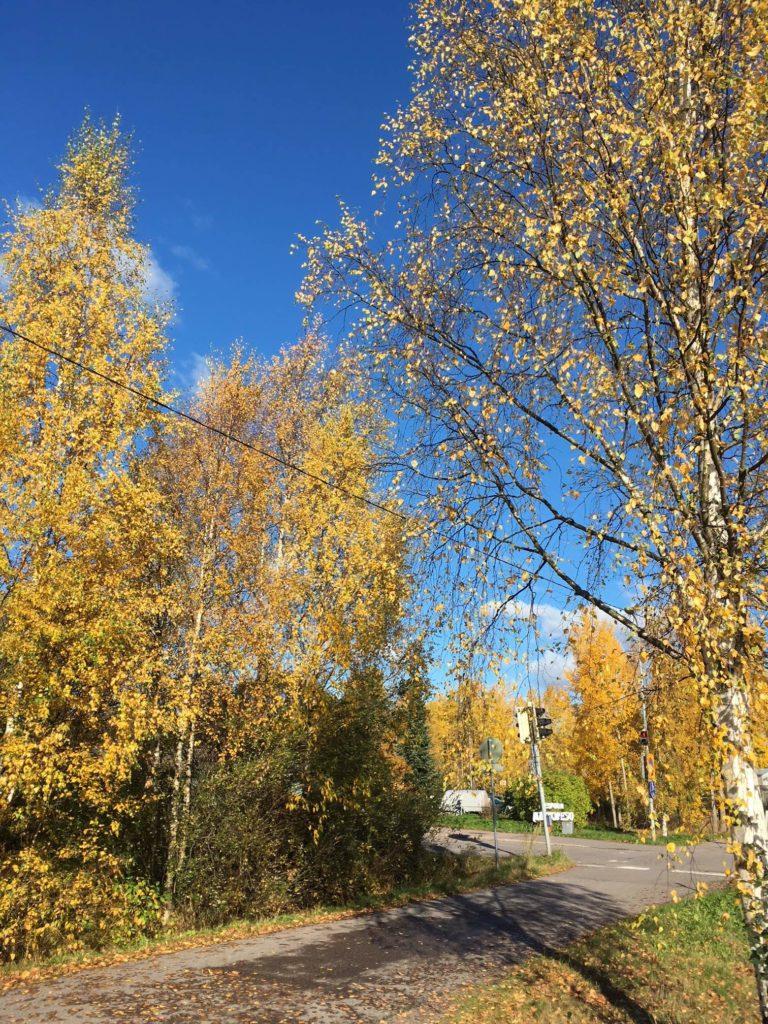 フィンランドの短い秋