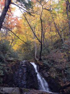 ローレル滝