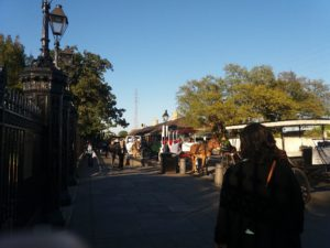 ニューオリンズの馬車