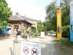 コペンハーゲンの植物園