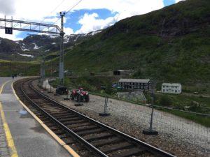 山間のミュルダール駅