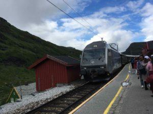 観光電車っぽいフロム鉄道